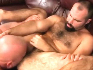 unshaved fuck a bear
