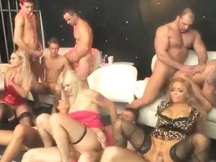 Hot BI PARTY