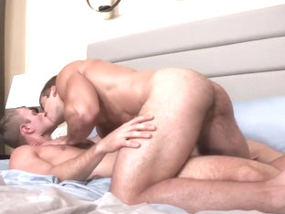 Stu & Blake: POP-UP Official - SeanCody