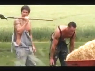 Farmers Fuck in Field