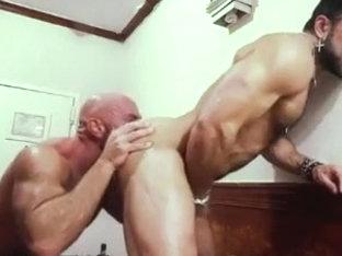 Muscle motel