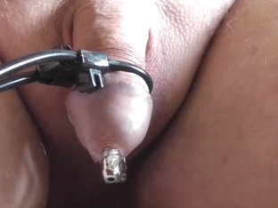 My estim new penis plug