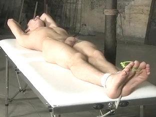 (2) Electro sex pure