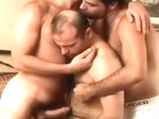 Hairy Latin Solo