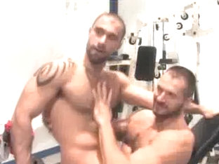 Arpad Miklos & Alex Corsi in the gym