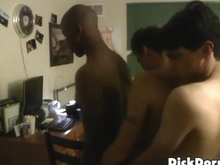 Dickdorm Video: Centipenis