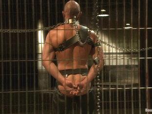 BoundGods : Caged and fucked like an animal