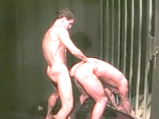 Load Warriors Bareback Sex Hot