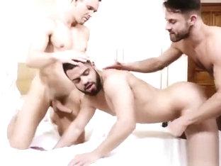 Bottom Boy Bitches