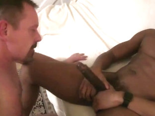 White daddy new delight