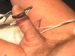 Electrocum with erection