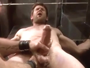 Milking Hardcore