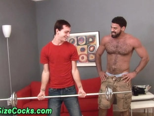 Bears huge rod sucked by twink