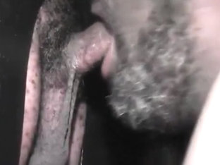 Philly GLORYHOLE-22 (MAURICE)