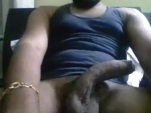 Succulent Indian Guju Cock