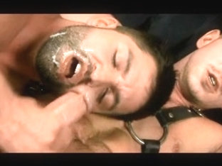 really hot bj cumshot clips love it