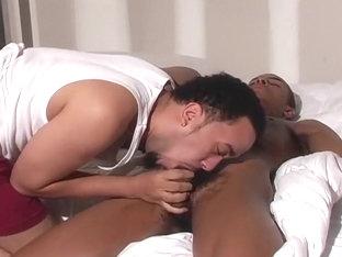 Horny Black Gay Fuckers Heat And Slim